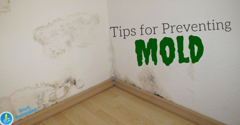 Tips for Preventing Mold